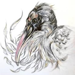 """""""Imperiled: Wood Stork"""", graphite and powder pastel on panel, 8x8x1½ """", 2017"""