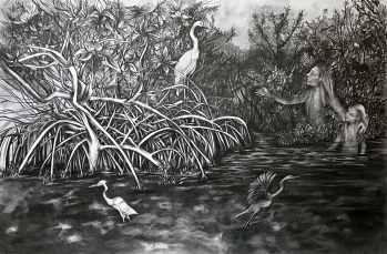 """""""Vision in a Mangrove Estuary"""", graphite on bristol board, 11x17"""", 2017"""